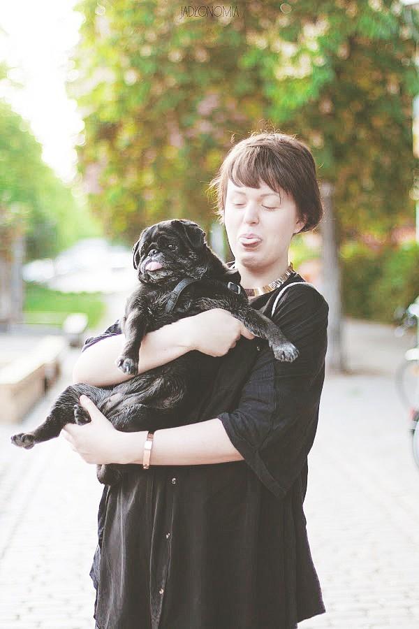 Zuza Mops poleca adopcje