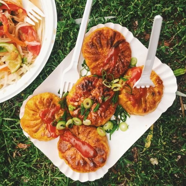 Przedsmak tajskiego parku, pierożki z warzywami, ostrym sosem i dymką.